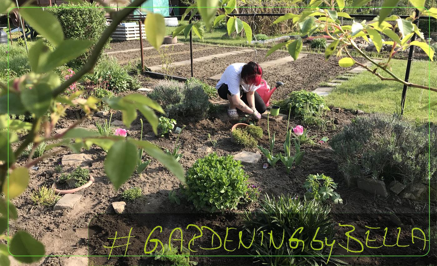 Gardening - egal ob im Garten oder zu Hause